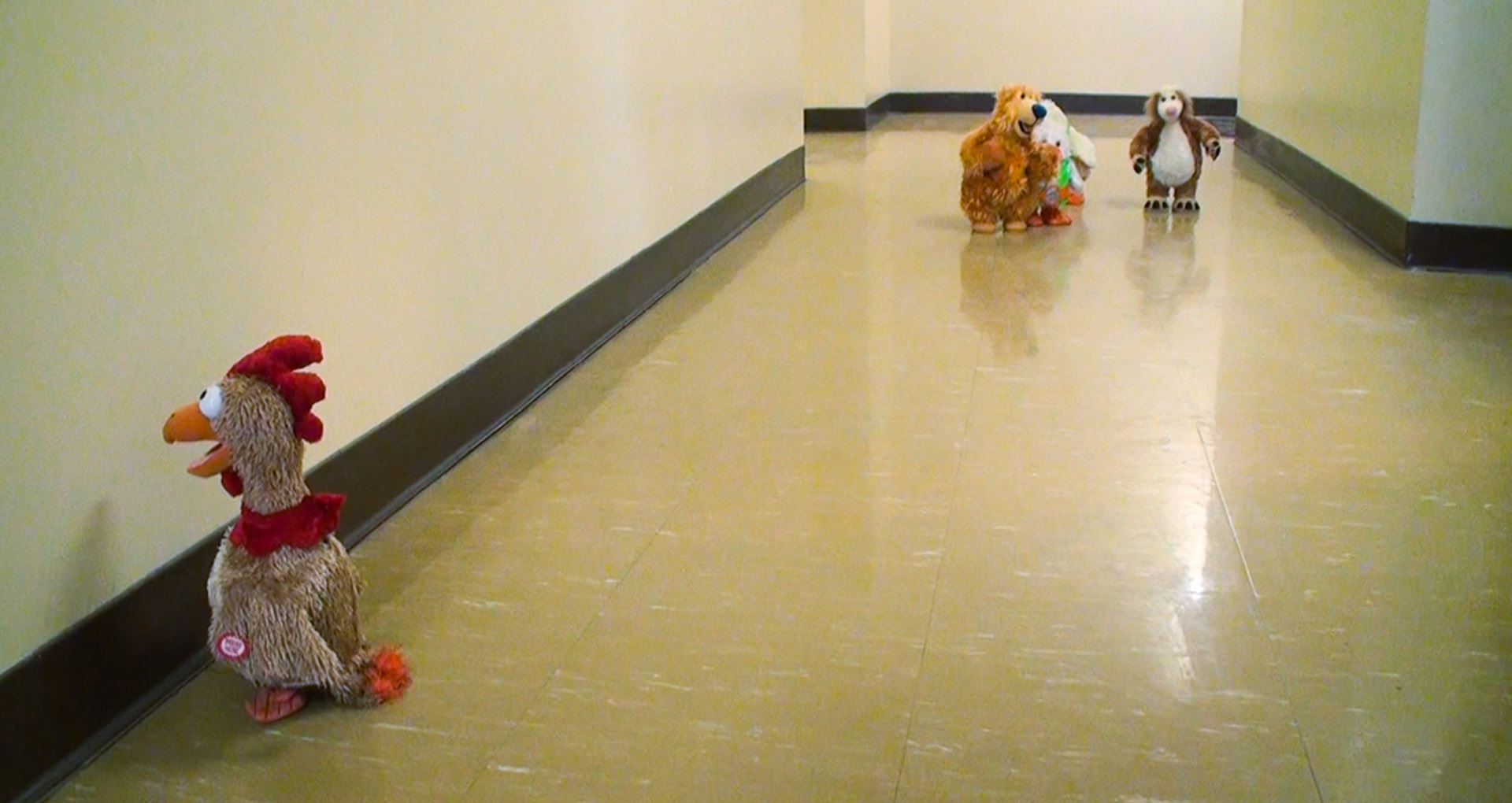 color picture, Teddy Bears standing in a corridor