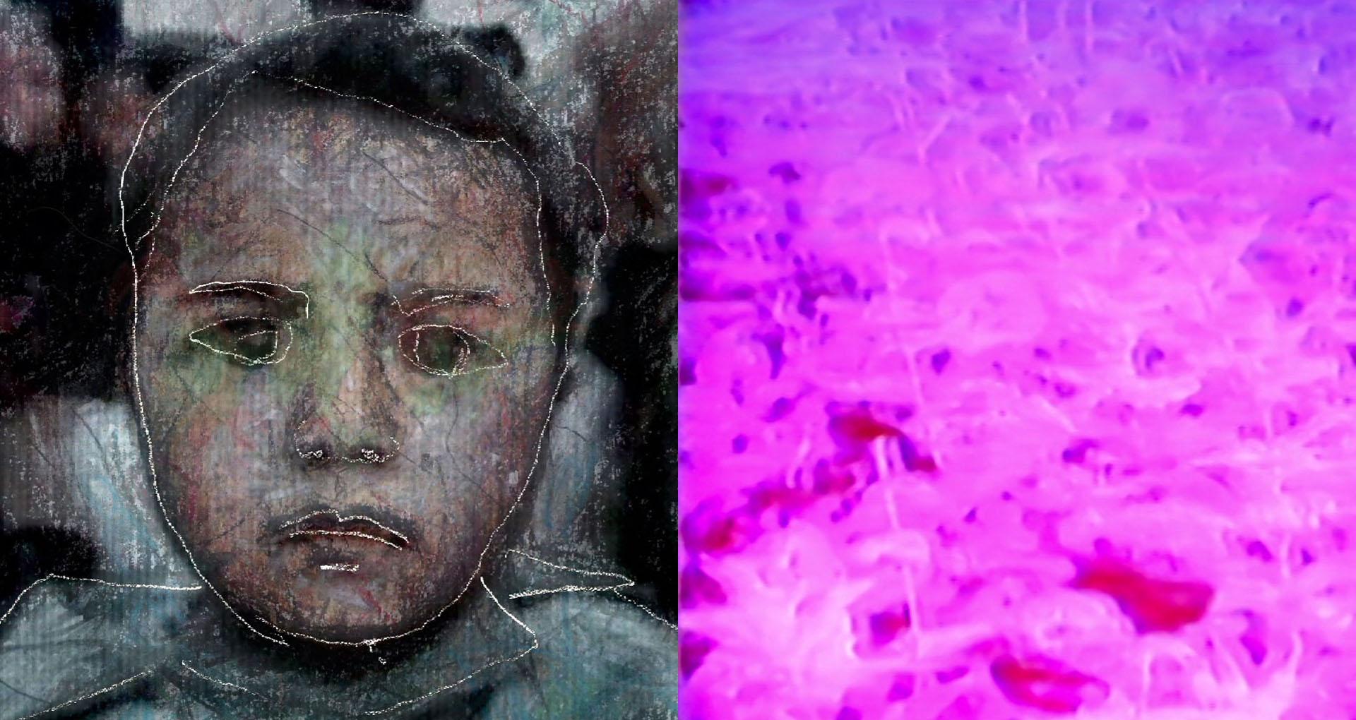 image couleur, uj portrait d'enfant à gauche et un champs de fleur rose à droite